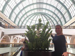 Dubai en un dia - Dubai Mall 3