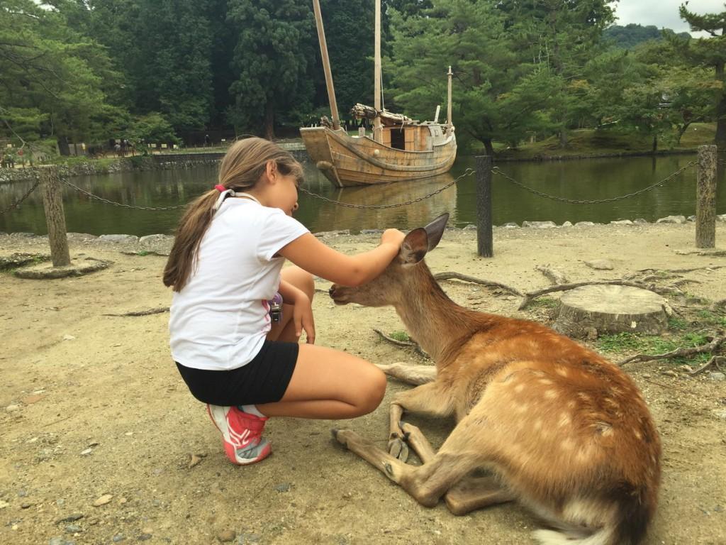 Ciervos en el templo de Nara en Kyoto