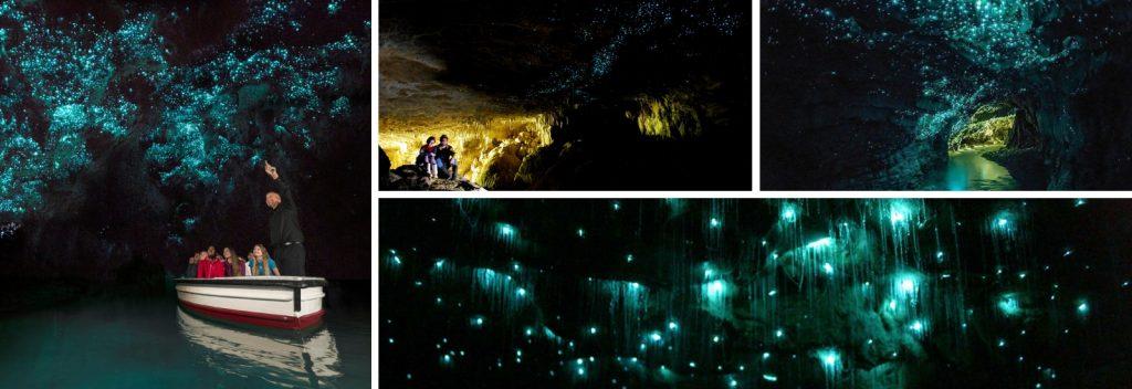 Cuevas Waitomo Nueva Zelanda