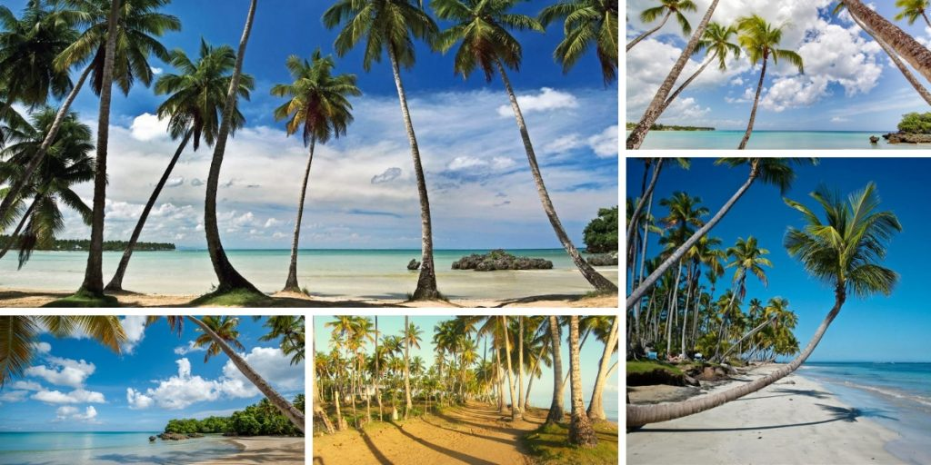 Las mejores playas de Republica Dominicana (1)